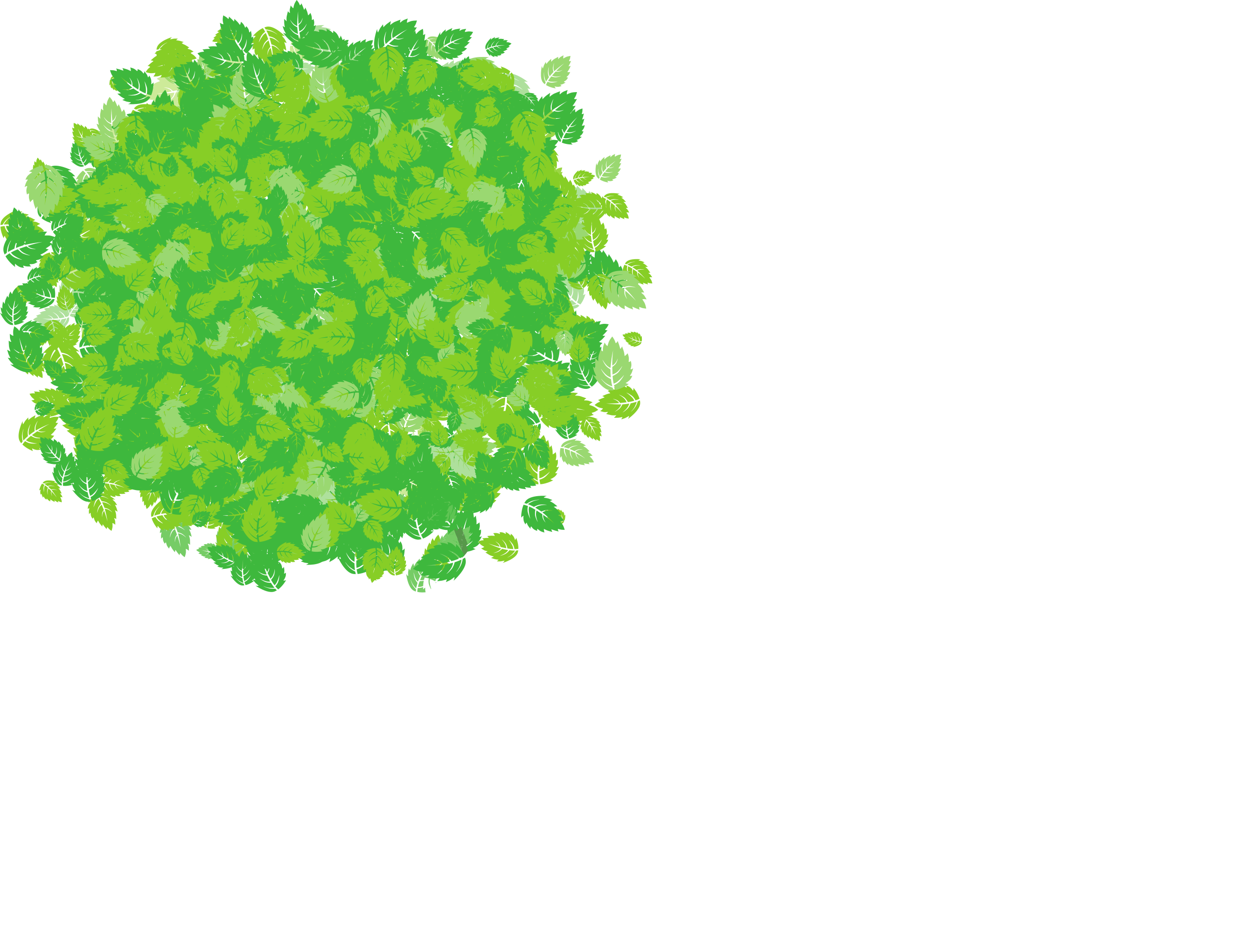 Buscott Woodworking Ltd